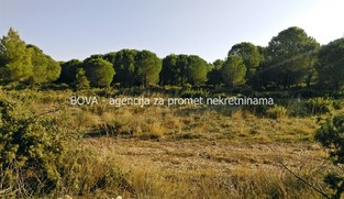 Poljoprivredno zemljište 1532 m2 u Dragama, Zadar