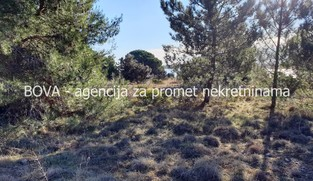 Poljoprivredno zemljište 7100 m2 na Viru, Zadar *PRVI RED DO MORA* *PRILIKA*