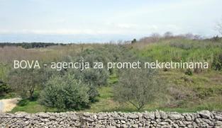Poljoprivredno zemljište 3516 m2 u Vrsima, Zadar *1. RED DO GRAĐEVINSKE ZONE* *PRILIKA*