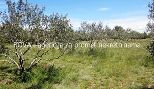 Poljoprivredno zemljište 2993 m2 u Vrsima, Zadar *SA LEGALIZIRANIM OBJEKTOM*