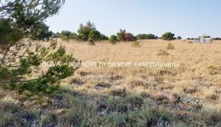 Poljoprivredno zemljište 3000 m2 na Viru, Zadar *400 m OD MORA*