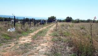 Poljoprivredno zemljište 750 m2 na Viru, Zadar *450 m OD PLAŽE* *POGLED MORE*