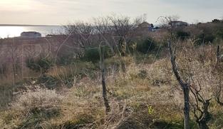 Građevinsko zemljište 685 m2 u Rtini, Zadar *350 m OD MORA*