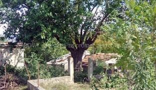 Građevinsko zemljište 616 m2 u Pridragi, Zadar  (ID-1938)