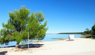 Građevinsko zemljište 488 m2 u Vrsima, Zadar *350 m OD PLAŽE*