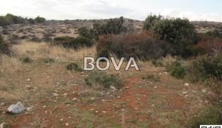 Poljoprivredno zemljište 600 m2 – Vir *PRVI RED DO GRAĐEVINSKE ZONE* *POGLED MORE*  (ID-2017)