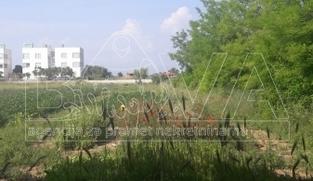 Građevinsko zemljište 3350 m2 u Privlaci, Zadar *PRVI RED DO MORA*  (ID-1510)